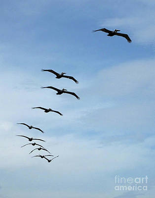 Photograph - Formation Folly Beach Sc by Lizi Beard-Ward