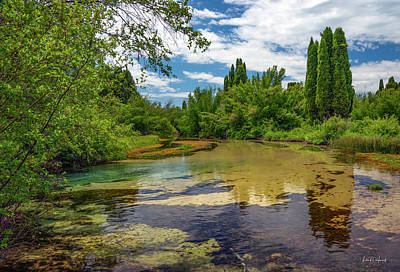 Photograph - Formation Springs Reserve by Leland D Howard