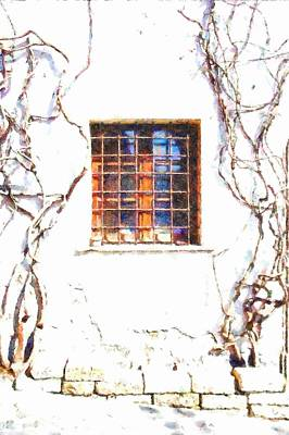 Photograph - Formello Window And Climbing Plants by Giuseppe Cocco