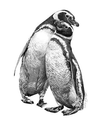 Forrest And Jenny The Penguins Art Print