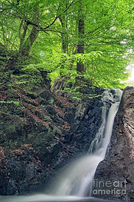 Photograph - Forsakar Waterfall In Skane by Antony McAulay