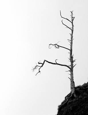 Photograph - Forsaken by Joseph Skompski