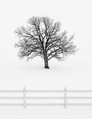 Forsaken Winter Art Print by Todd Klassy