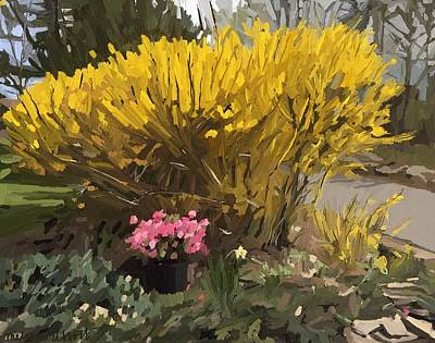 Painting - Forsythia Gloucester, Ma  by Melissa Abbott