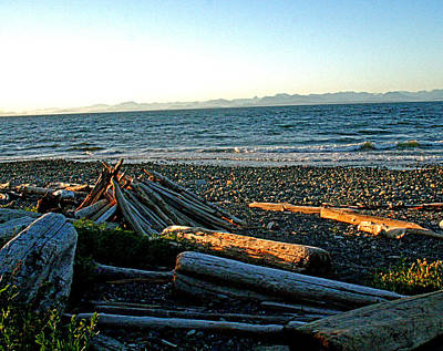 Photograph - Fort Driftwood - Vancouver Island - Bc by Joseph Coulombe