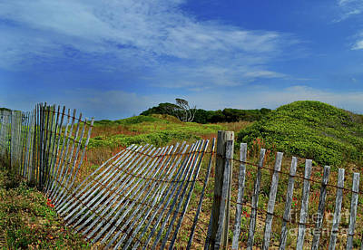 Photograph - Fort Fisher Fence by Amy Lucid