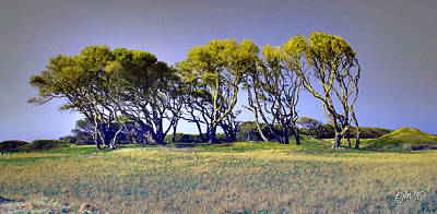 Art Print featuring the photograph Fort Fisher Trees by Phil Mancuso