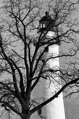 Photograph - Fort Gratiot Light Through Winter Tree Bw by Mary Bedy