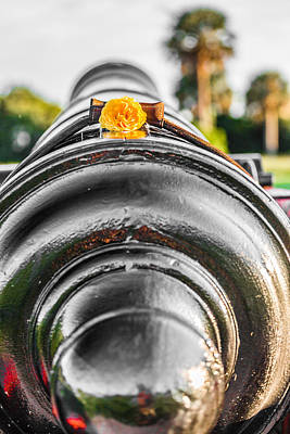 Photograph - Fort Moultrie Cannon by Donnie Whitaker