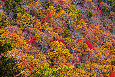 Fort Mountain State Park Cool Springs Overlook Art Print by Bernd Laeschke