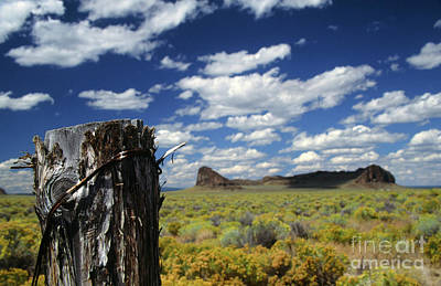 Photograph - Fort Rock by Rick Bures