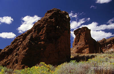 Photograph - Fort Rock Twin Towers- H by Rick Bures