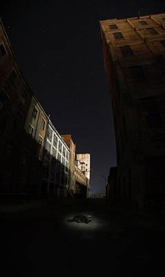 Photograph - Fort William Starch Works Cat Heaven by Jakub Sisak