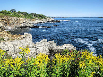 Photograph - Fort Williams Park Rocky Coastline  by Janice Drew