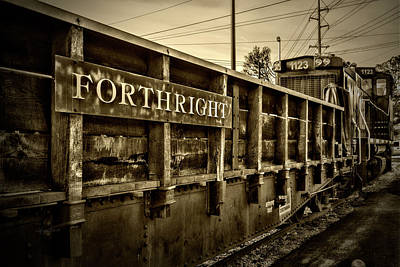 Photograph - Forthright by Sharon Popek