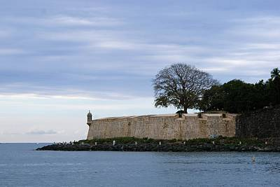 Photograph - Fortress Wall by Lois Lepisto