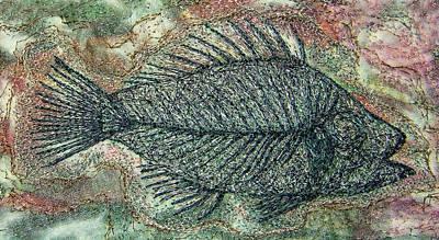 Tapestries Textiles Photograph - Fossil Fish In Rock by Deborah Wirsu