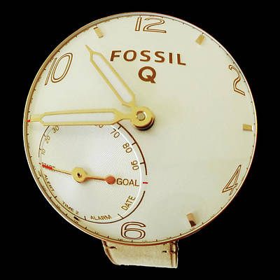 Photograph - Fossil Q 7 by Bruce Iorio