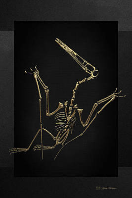 Digital Art - Fossil Record - Gold Pterodactyl Fossil On Black Canvas #4 by Serge Averbukh
