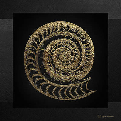 Fossil Record - Golden Ammonite Fossil On Square Black Canvas # Original