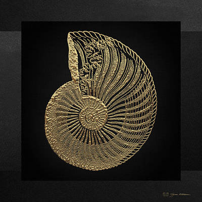 Fossil Record - Golden Ammonite Fossil On Square Black Canvas #1 Original
