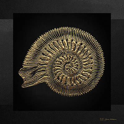 Fossil Record - Golden Ammonite Fossil On Square Black Canvas #2 Original