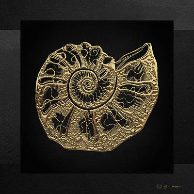 Digital Art - Fossil Record - Golden Ammonite Fossil On Square Black Canvas #4 by Serge Averbukh