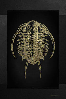 Digital Art - Fossil Record - Golden Trilobite On Black No.2 by Serge Averbukh