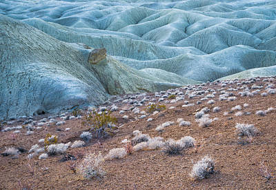 Fossil Reef And Mud Hills Print by Alexander Kunz