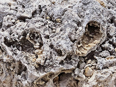 Photograph - Fossil Rock Abstract 11 by Bob Slitzan