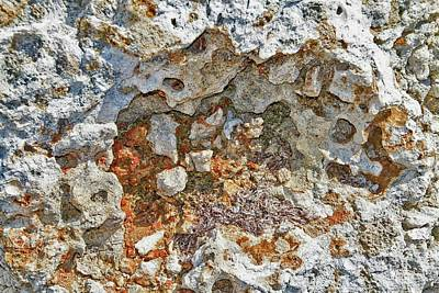 Photograph - Fossil Rock Abstract 9 by Bob Slitzan