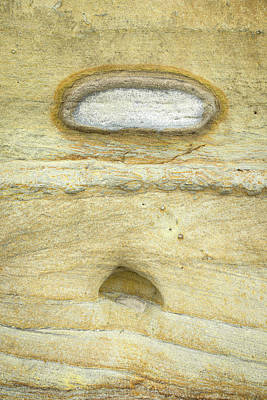 Photograph - Fossilized Minion by Alexander Kunz