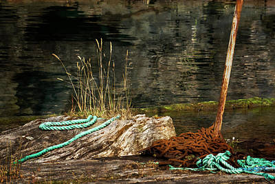Photograph - Found On The Old Dock - 365-171 by Inge Riis McDonald