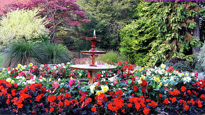 Photograph - Fountain And Red Begonias by Nareeta Martin
