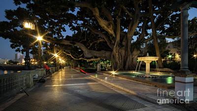 Photograph - Fountain At Alameda De Apodaca Cadiz Spain by Pablo Avanzini