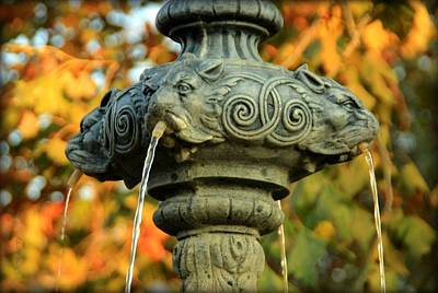 Photograph - Fountain At Union Park by Chris Berry