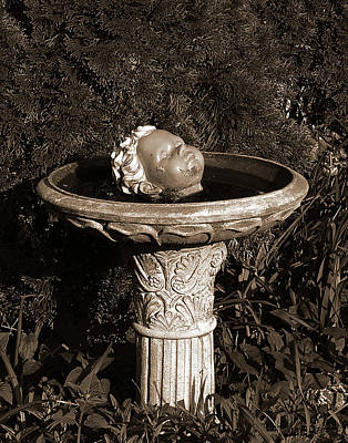 Photograph - Fountain Of Youth by Tom Romeo