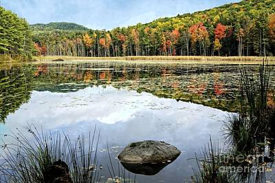 Photograph - Fountain Pond State Park by David Birchall