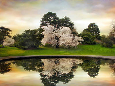 Pear Tree Photograph - Fountain Reflections by Jessica Jenney