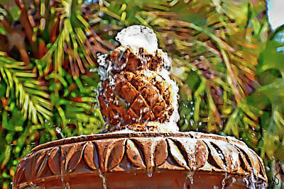 Photograph - Fountain Top by Gina O'Brien