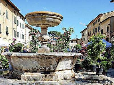 Photograph - Fountain With A Sea Of Plants by Dorothy Berry-Lound
