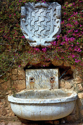 Photograph - Fountains And Flowers At The Roman Walls In Tarragona by Eduardo Jose Accorinti