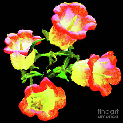 Photograph - Four Bell Flowers by Merton Allen