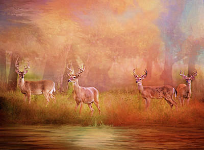 Photograph - Four Bucks by Lynn Bauer