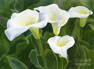 White Flowers Painting - Four Calla Lily Blossoms With Leaves by Sharon Freeman