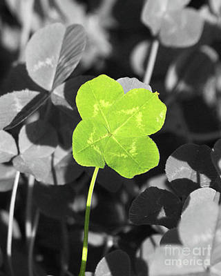 Featured Tapestry Designs - Four Leaf Clover by Kimberly Blom-Roemer