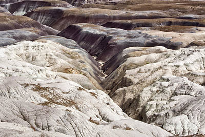 Photograph - Four Million Geologic Years by Melany Sarafis
