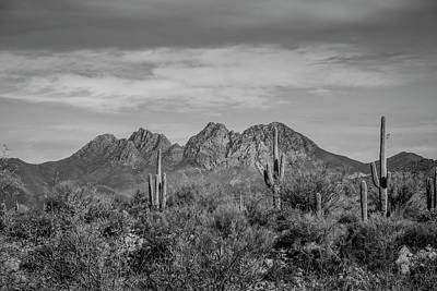 Photograph - Four Peaks Black And White by Teresa Wilson