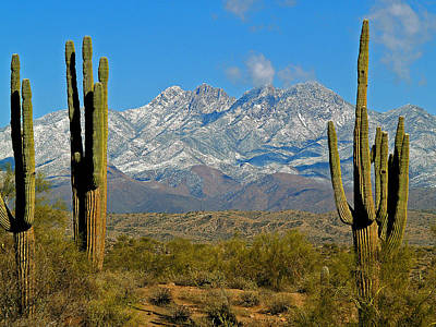 Photograph - Four Peaks In Snow 7 by Jeff Brunton