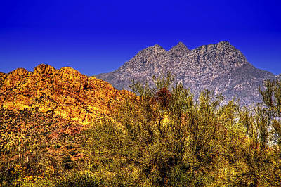 Photograph - Four Peaks Spring No. 1 by Roger Passman